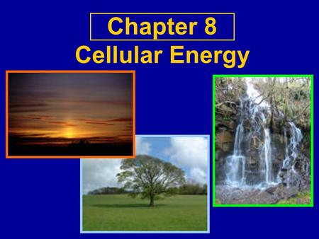 Chapter 8 Cellular Energy. Cooperative Activity What do you know about energy?