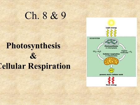 Photosynthesis & Cellular Respiration Ch. 8 & 9. Autotrophs - Photosynthesis Heterotrophs – Eat food Food and Energy.