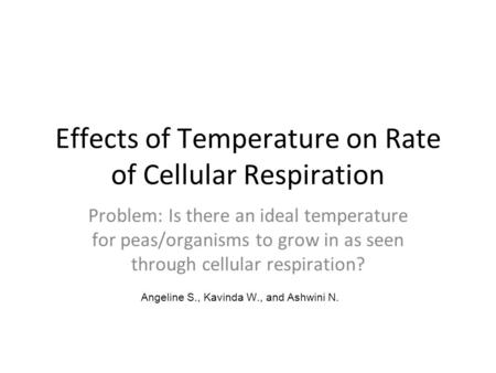 Effects of Temperature on Rate of Cellular Respiration Problem: Is there an ideal temperature for peas/organisms to grow in as seen through cellular respiration?