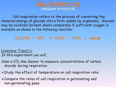 C ELL R ESPIRATION LabQuest Activity 11B Cell respiration refers to the process of converting the chemical energy of glucose into a form usable by organisms.