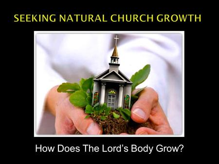 How Does The Lord's Body Grow?.  The Body Grows Naturally  Many church growth plans are unnatural. Focus on programs or facilities.  The Lord's Body.