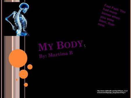 M Y B ODY By: Martina B  ones/overview/google_imagesearch?img=1 Fast Fact: You had more bones when you were.