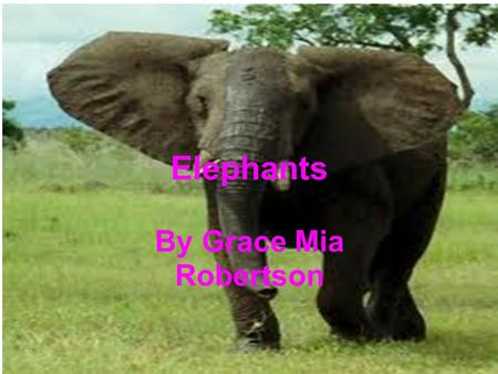 Elephants By Grace Mia Robertson. Facts Elephants are large and grey have big ears and long trunks.If all elephants seem the same to you take a closer.