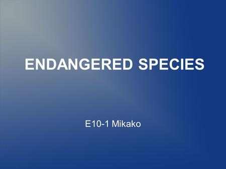 ENDANGERED SPECIES E10-1 Mikako. What is endangered species? Endangered species is a population of organisms which is facing a high risk of becoming extinct.