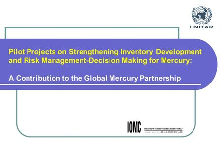 Pilot Projects on Strengthening Inventory Development and Risk Management-Decision Making for Mercury: A Contribution to the Global Mercury Partnership.