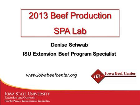 Denise Schwab ISU Extension Beef Program Specialist 2013 Beef Production SPA Lab 2013 Beef Production SPA Lab www.iowabeefcenter.org.
