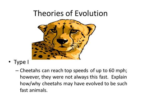 Theories of Evolution Type I – Cheetahs can reach top speeds of up to 60 mph; however, they were not always this fast. Explain how/why cheetahs may have.