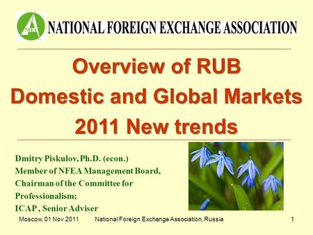 Moscow, 01 Nov 2011National Foreign Exchange Association, Russia1 Overview of RUB Domestic and Global Markets 2011 New trends Dmitry Piskulov, Ph.D. (econ.)