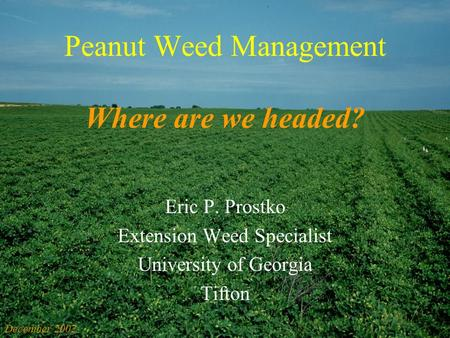 Peanut Weed Management Where are we headed? Eric P. Prostko Extension Weed Specialist University of Georgia Tifton December 2002.
