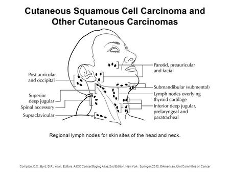 Cutaneous Squamous Cell Carcinoma and Other Cutaneous Carcinomas Regional lymph nodes for skin sites of the head and neck. Compton, C.C., Byrd, D.R., et.