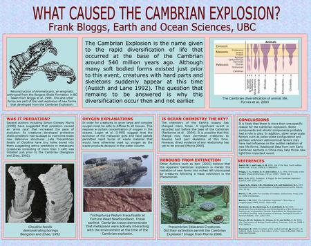 The Cambrian Explosion is the name given to the rapid diversification of life that occurred at the base of the Cambrian around 540 million years ago. Although.