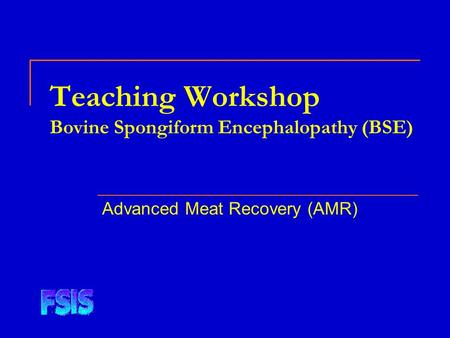 Teaching Workshop Bovine Spongiform Encephalopathy (BSE) Advanced Meat Recovery (AMR)