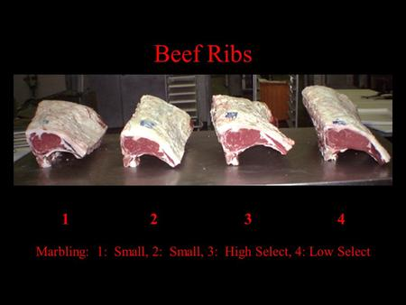 1 23 4 Marbling: 1: Small, 2: Small, 3: High Select, 4: Low Select Beef Ribs.