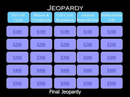 Jeopardy $100 The Cell Cycle Mitosis & Cytokinesis Cell Cycle Regulation Asexual Reproduction Multicellular Life $200 $300 $400 $500 $400 $300 $200 $100.
