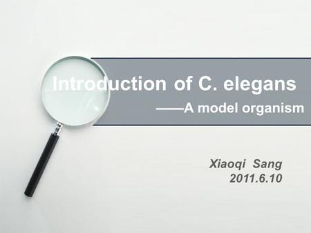 Introduction of C. elegans ——A model organism Xiaoqi Sang 2011.6.10.