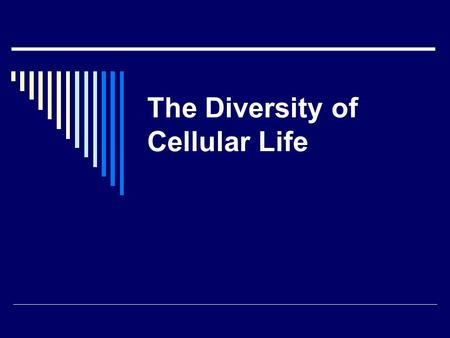 The Diversity of Cellular Life. Unicellular Organisms 1. An organism that consists of a single cell is called a unicellular organism. Unicellular organisms.