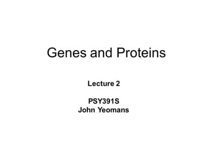 Genes and Proteins Lecture 2 PSY391S John Yeomans.