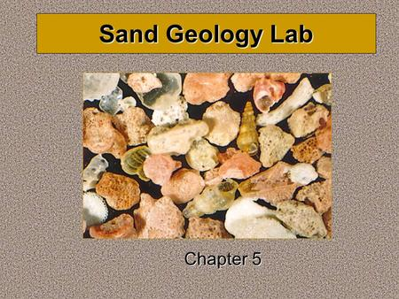 Sand Geology Lab Chapter 5. Measuring Grain Size Grain size is a direct result of the amount of energy available to transport the sediment in the environment.