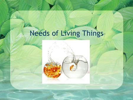 Needs of Living Things. What do you need? Think for a moment. What could you not live without? Make a list in your notes.