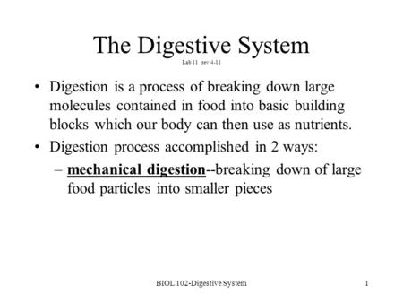 1 The Digestive System Lab 11 rev 4-11 Digestion is a process of breaking down large molecules contained in food into basic building blocks which our body.