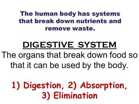 DIGESTIVE SYSTEM The organs that break down food so that it can be used by the body. 1) Digestion, 2) Absorption, 3) Elimination The human body has systems.