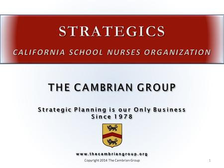 Strategic Planning is our Only Business Since 1978 THE CAMBRIAN GROUP Strategic Planning is our Only Business Since 1978www.thecambriangroup.org www.thecambriangroup.org.