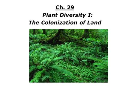 Ch. 29 Plant Diversity I: The Colonization of Land.