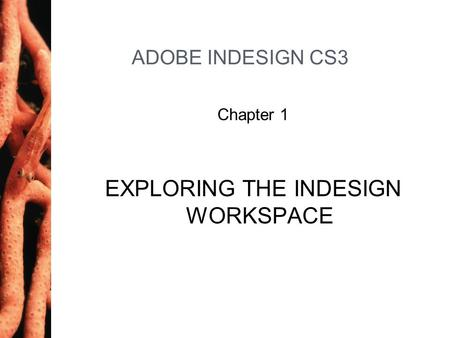 ADOBE INDESIGN CS3 Chapter 1 EXPLORING THE INDESIGN WORKSPACE.