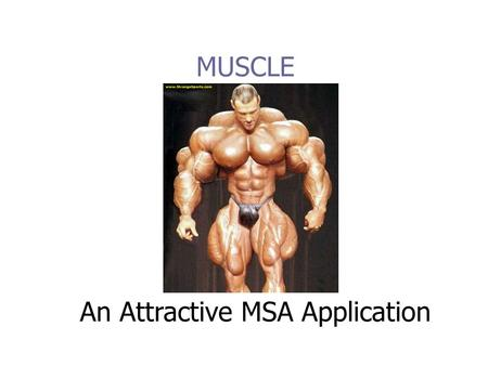 MUSCLE An Attractive MSA Application. Overview Some background on the MUSCLE software. The innovations and improvements of MUSCLE. The MUSCLE algorithm.
