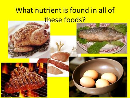 What nutrient is found in all of these foods?. PROTEIN Comprised of 20 different amino acids Your body can make 11 of these amino acids There are 9 essential.