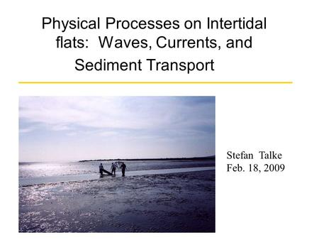 Physical Processes on Intertidal flats: Waves, Currents, and Sediment Transport Stefan Talke Feb. 18, 2009.