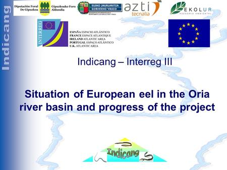 Séminaire Indicang 18 et 19 mai 2005 Indicang – Interreg III Situation of European eel in the Oria river basin and progress of the project.