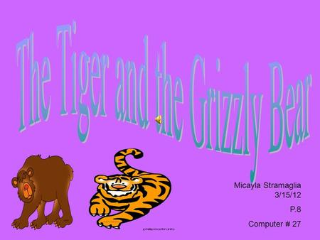 Micayla Stramaglia 3/15/12 P.8 Computer # 27 Once upon a time on a sunny day there was a tiger and a grizzly bear. The tiger's name was Fred and the.