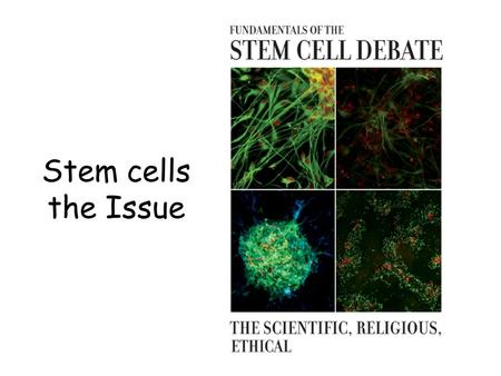 Stem cells the Issue. Learning Objectives 1.To understand why some people may not agree with the use of embryonic stem cells. 2.To know whether there.