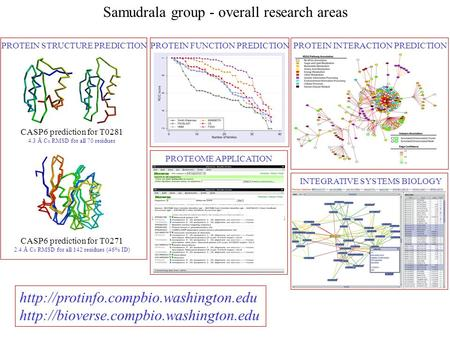 Samudrala group - overall research areas CASP6 prediction for T0281 4.3 Å C α RMSD for all 70 residues CASP6 prediction for T0271 2.4 Å C α RMSD for all.