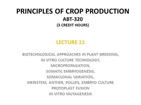 PRINCIPLES OF CROP PRODUCTION ABT-320 (3 CREDIT HOURS) LECTURE 11 BIOTECHNLOGICAL APPROACHES IN PLANT BREEDING, IN VITRO CULTURE TECHNOLOGY, MICROPROPAGATION,