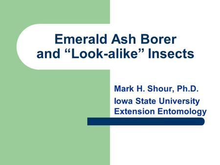 "Emerald Ash Borer and ""Look-alike"" Insects Mark H. Shour, Ph.D. Iowa State University Extension Entomology."