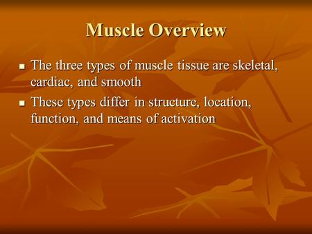 Muscle Overview The three types of muscle tissue are skeletal, cardiac, and smooth The three types of muscle tissue are skeletal, cardiac, and smooth These.