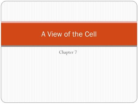 Chapter 7 A View of the Cell. What is a cell? Cells are the basic units of living things. Plants, animals, people, and bacteria are made of cells. The.