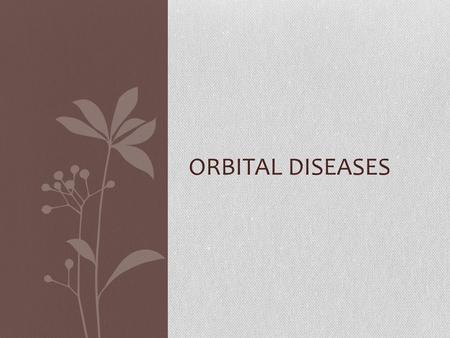 ORBITAL DISEASES. Bones Of the orbit Types Of Orbital Diseases : Inflammations : 1-Orbital cellulitis 2-Cavernous Thrombosis Endocrine Diseases : 1-Thyrotoxicosis.