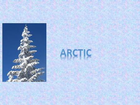 The Arctic tundra is a cold place with no trees and very little rainfall. The ground is frozen all year round. It is located near the north pole in.