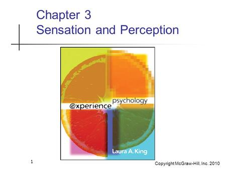 Copyright McGraw-Hill, Inc. 2010 1 Chapter 3 Sensation and Perception.
