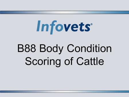 B88 Body Condition Scoring of Cattle. Lesson Outline  Introduction  Numerical Scoring System 1-9  Terms  Guidelines for Body Condition Scores  Nutritional.