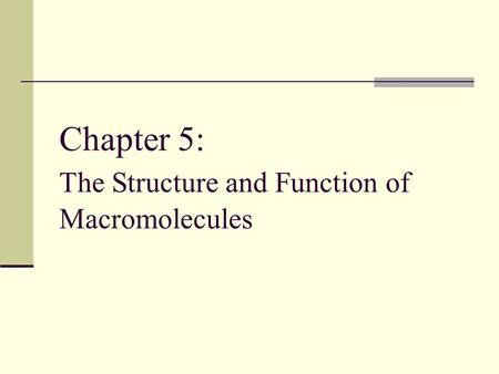 Chapter 5: The Structure and Function of Macromolecules.