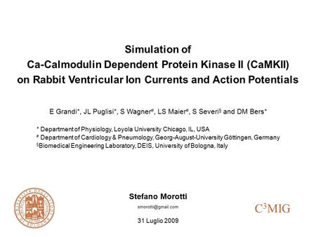Simulation of Ca-Calmodulin Dependent Protein Kinase II (CaMKII) on Rabbit Ventricular Ion Currents and Action Potentials E Grandi*, JL Puglisi*, S Wagner.