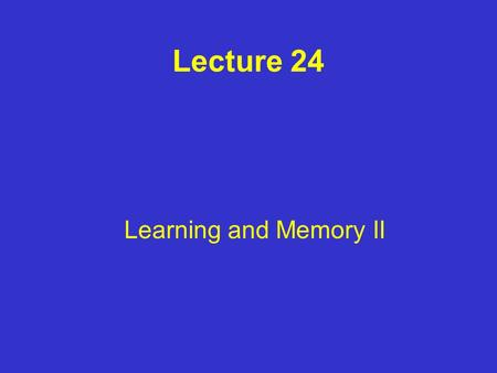 Lecture 24 Learning and Memory II. Memories Long term memory stored in cortex Information is processed for memory storage in other brain regions (i.e.