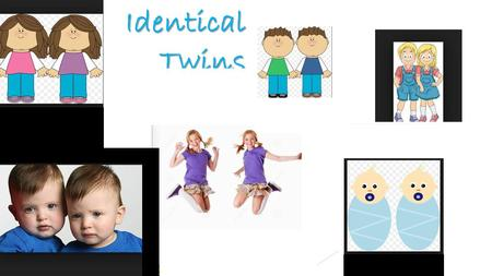 Identical Twins. Genome * The complete set of genetic material in an organism.