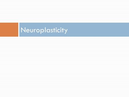 Neuroplasticity. How Does the Brain Change?  Plasticity: a property of the brain that allows it to change as a result of experience, drugs, or injury.