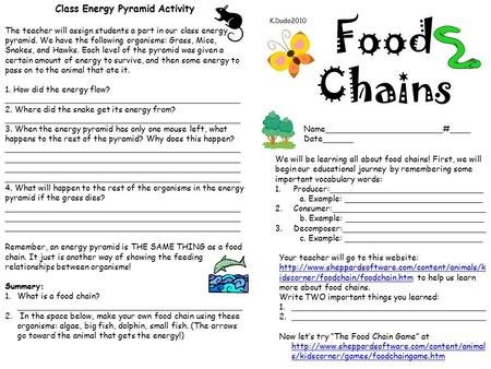 Food Chains Name_______________________#____ Date______ K.Duda2010 We will be learning all about food chains! First, we will begin our educational journey.
