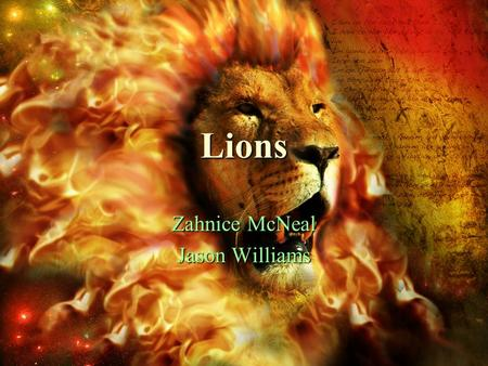 Lions Zahnice McNeal Jason Williams. Appearance Boy lions have a mane. Boy lions have a mane. Lions' manes make them look larger than they are. Lions'